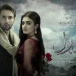 Два слова / Do Bol (2019) Пакистан