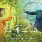 Лес / Forest (2020) Южная Корея