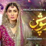 Любовь под защитой / Mehar Posh (2020) Пакистан