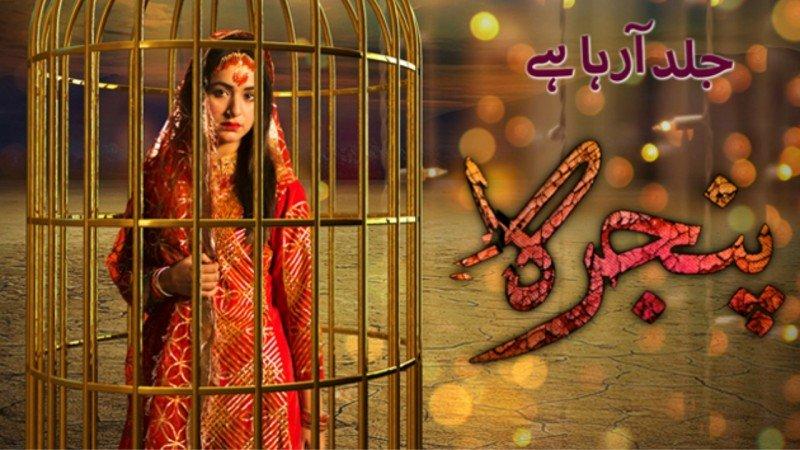 Клетка / Pinjra (2017) Пакистан