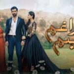 Твои печали и радости / Tera Gham Aur Hum (2020) Пакистан