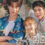 Записки юности / Record of Youth (2020) Южная Корея