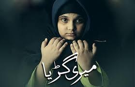 Моя Гурия / Meri Guriya (2018) Пакистан