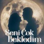 Я тебя так долго ждал / Seni Cok Bekledim (2021) Турция