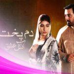 Пламенная любовь / Dumpukht — Aatish e Ishq (2016) Пакистан
