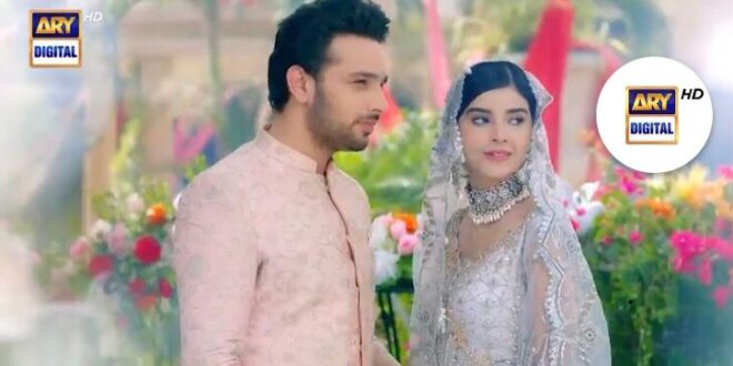 Только мой / Mere Apne (2021) Пакистан