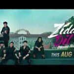 Упрямое сердце непреклонно / Ziddi Dil Maane Na (2021) Индия